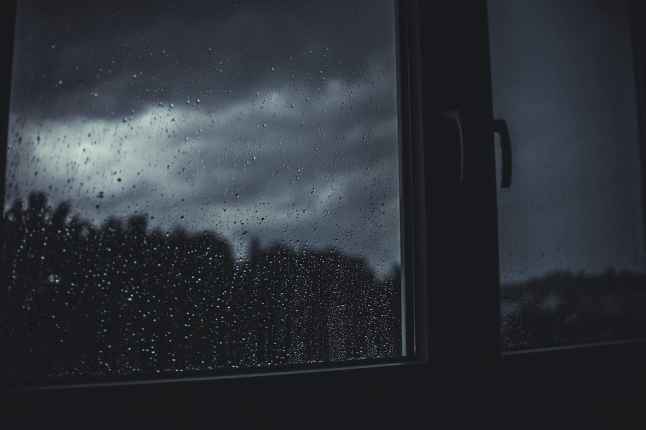 Window Wet Dark Raindrops Rain