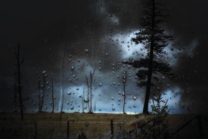 Landscape Trees Droplets Weather Sky Stormy