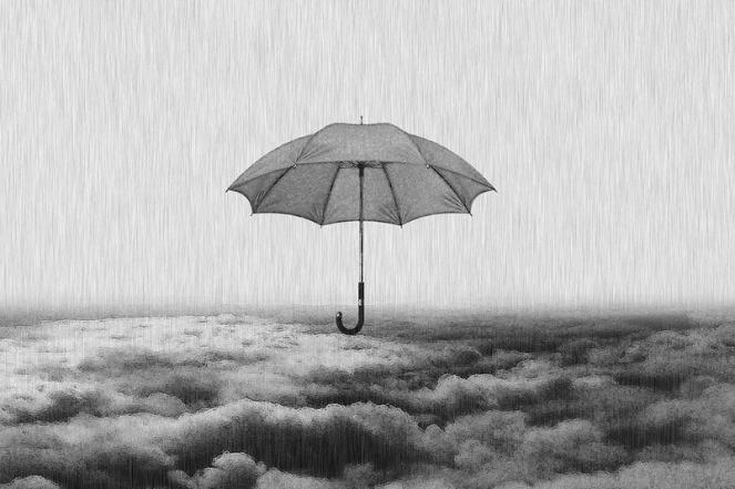 Weather Rain Umbrella Sunshade Nature Landscape