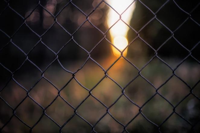 Background Sunset Light Fence Prison Cage Grid